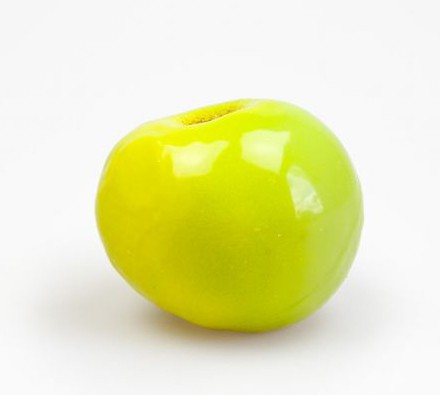 SelfDelve Apfel-Knebel