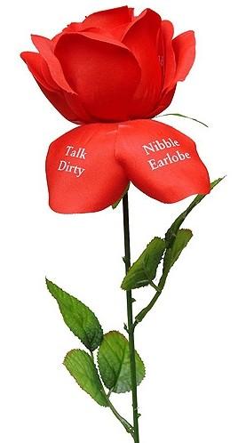 Fleur d'Amour Liebesrose